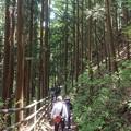 写真: 05吹き割の滝2遊歩道2