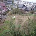 Photos: 0306裏の敷地6