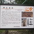 Photos: 1011-7神足遺跡