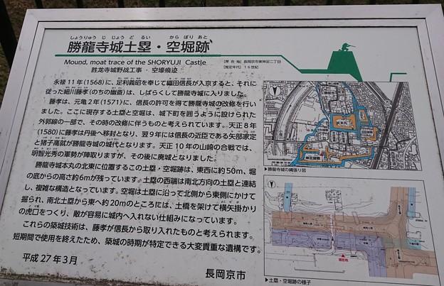Photos: 1011-8勝竜寺城土塁2
