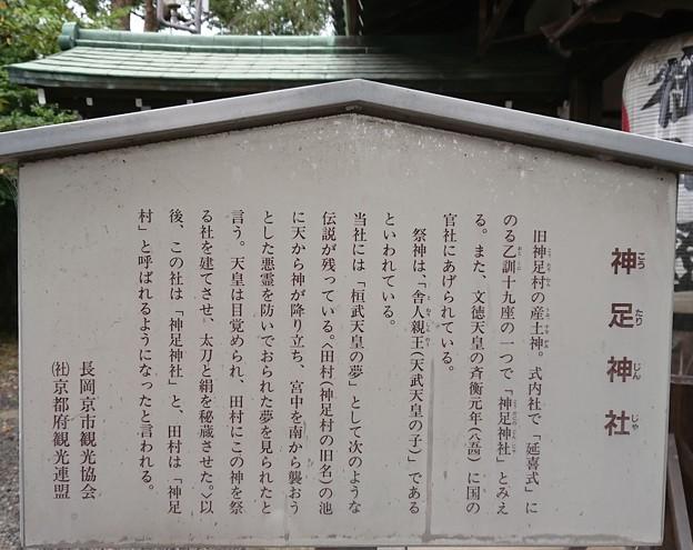 1011-9神足神社2