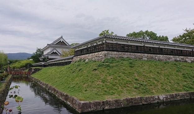 1011-10勝竜寺公園1