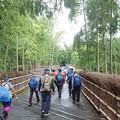 1019-2洛西竹林公園へ