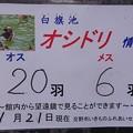 Photos: 0124楽歩会7