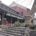 Photos: 0125自治会10