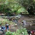 Photos: 滝への道1-2