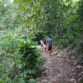 Photos: 滝への道3
