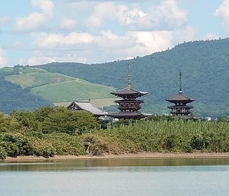 0829秋篠川5薬師寺3