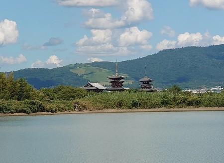 0829秋篠川5薬師寺2