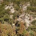 Photos: 0211-3次の滝4-2