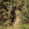 Photos: 0211-5稲荷の滝4