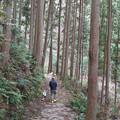 Photos: 0211-6不動の滝2