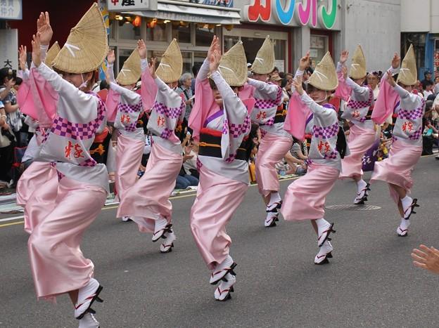 神奈川県大和阿波踊りにて