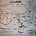 Photos: 舞岡公園