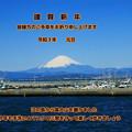 Photos: 歩く会