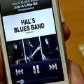 ワヤやの月曜日、今朝はこれから…HAL's Blues Band - Comfortable1