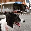 Instagram(°°)散万歩4