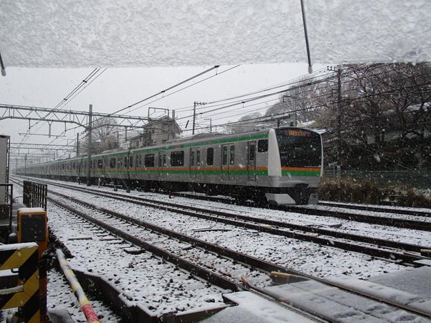 200329雪065