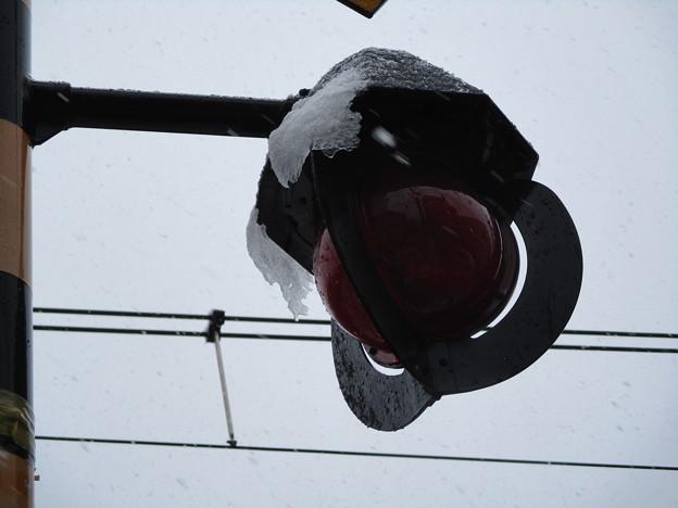 200329雪071