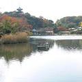 Photos: 三渓園紅葉1202te