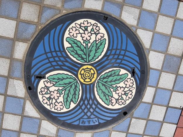 埼玉県・さいたま市(旧浦和市)