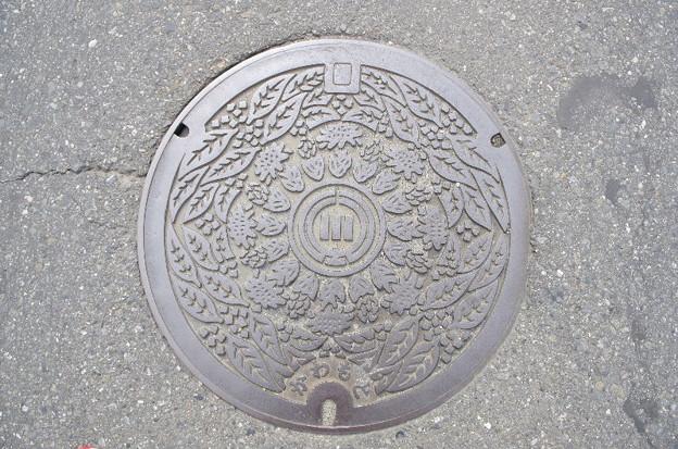 埼玉県・深谷市(旧川本町)