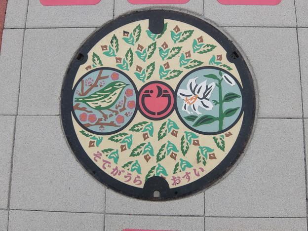 千葉県・袖ヶ浦市(マンホールカード図案)