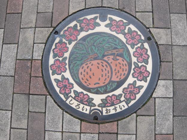 千葉県・白井市(マンホールカード図案)
