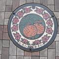 Photos: 千葉県・白井市(マンホールカード図案)