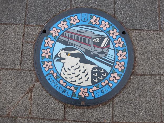 千葉県・流山市(マンホールカード図柄)