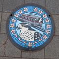Photos: 千葉県・流山市(マンホールカード図柄)