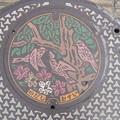 Photos: 千葉県・野田市(マンホールカード図柄)