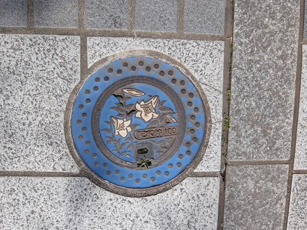 茨城県・結城市