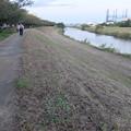 いつもの綾瀬川