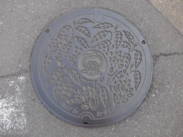 埼玉県・上尾市f