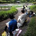 Photos: 馬見丘陵公園_菖蒲(4)