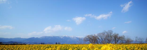 春香薫る湖畔