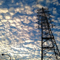 黄昏のひつじ雲