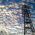 写真: 黄昏のひつじ雲