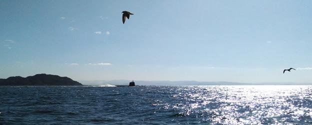 潜水艦「おうりゅう」SS-511見ゆ