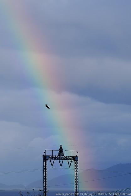 虹に飛ぶ・・・ピーヒョロ~