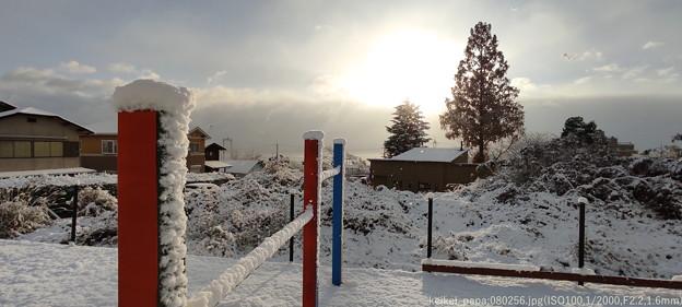 雪積もった!!!