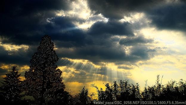 湖西:朝の光芒