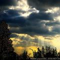 Photos: 湖西:朝の光芒
