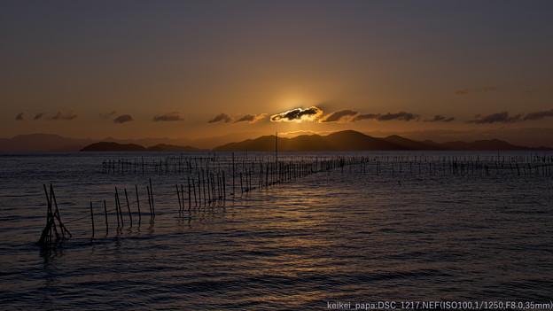 琵琶湖:魞の夜明