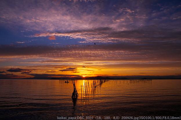 湖西黎明(0)