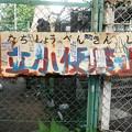 Photos: あいりん地区の看板