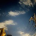 Photos: 夜空と電柱