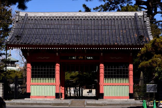 写真: 小岩善養寺