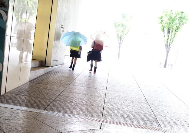 雨の日も仲良し